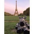 Bedtime Bear Ziggy went to France!