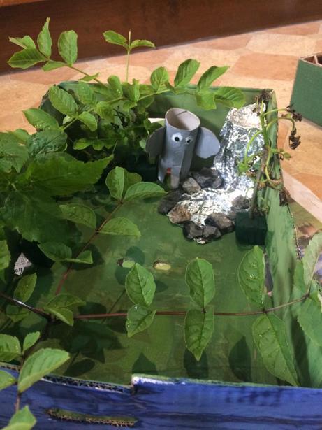 Jade's elephant habitat