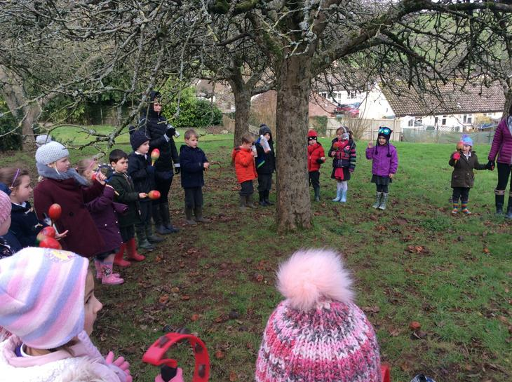 Wassailing the apple trees.