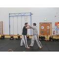 Ju Jitsu display