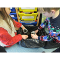 In December, we planted crocus bulbs in pots.