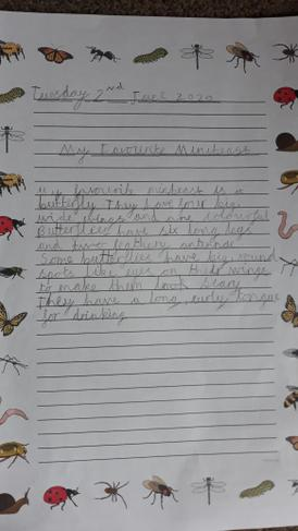 Amelia's descriptive writing about a Butterfly.