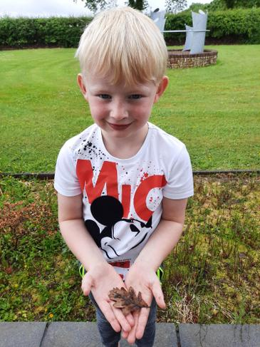 Jake's favourite minibeast is the Woodlouse.