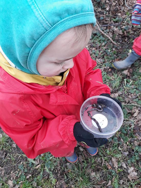 Nursery minibeast hunting in Forest School