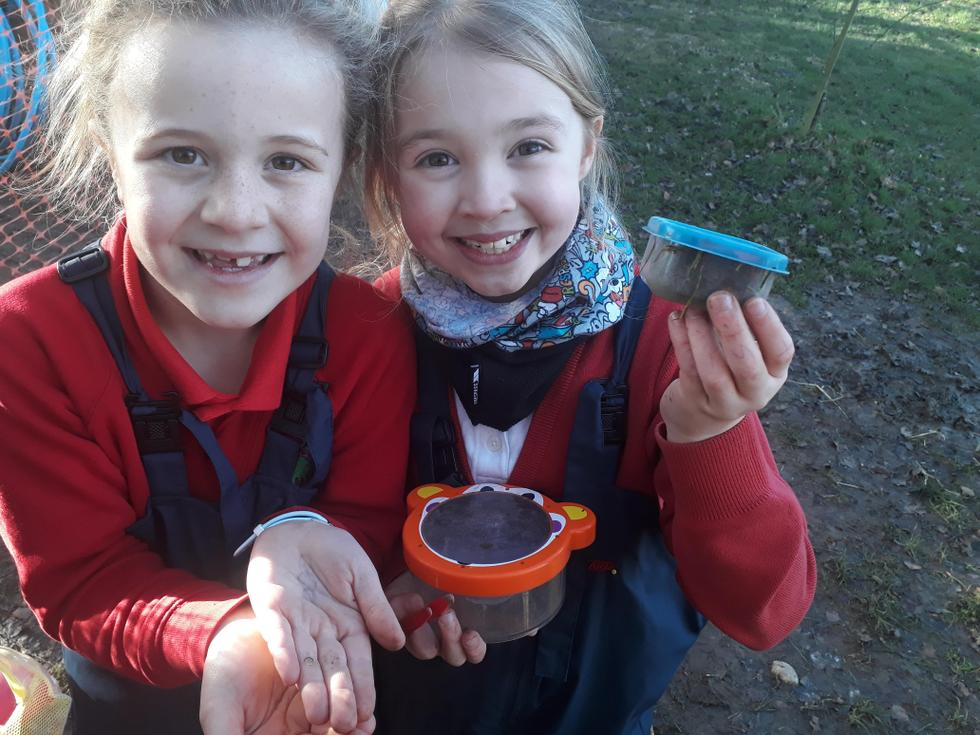 KS2 minibeast hunting in Forest School