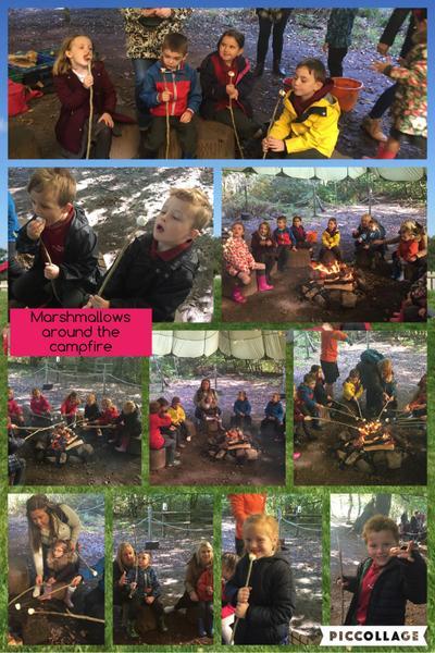 Roasting marshmallows around the campfire