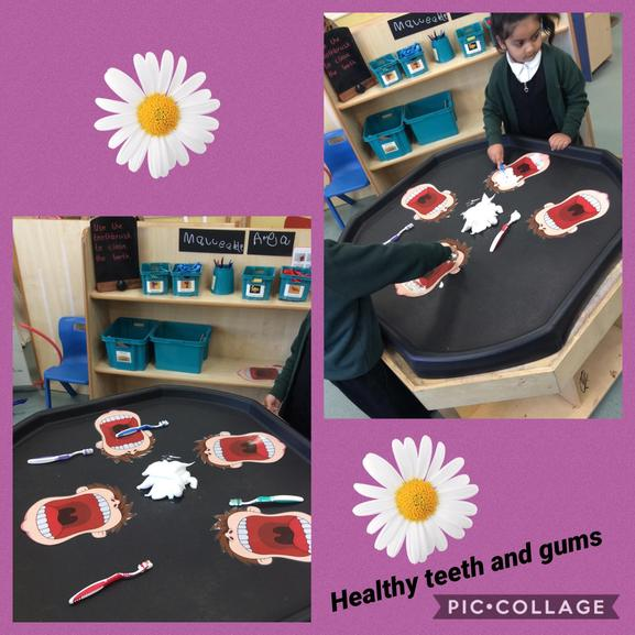 We have been learning about how to brush our teeth and why it is important.