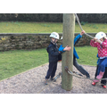 Teamwork on the Low Ropes