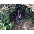 Taylor in his woodland den