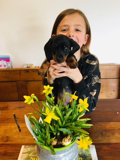 Elsa sent me a picture of her new puppy - Ethel!