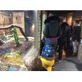 We saw a huge snake.