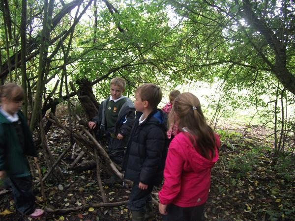 Amber Power - Team Work to Build a Shelter