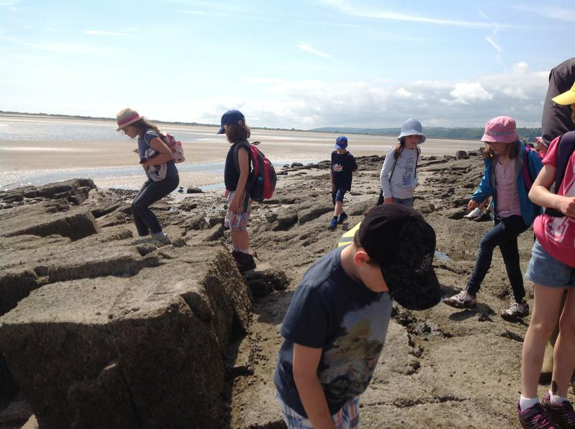 Rockpooling in Wales