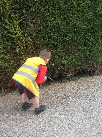 We do regular litter picks around our village.