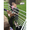 Everyone loves it when the farm animals visit us
