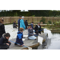 Pond dipping in our school pond