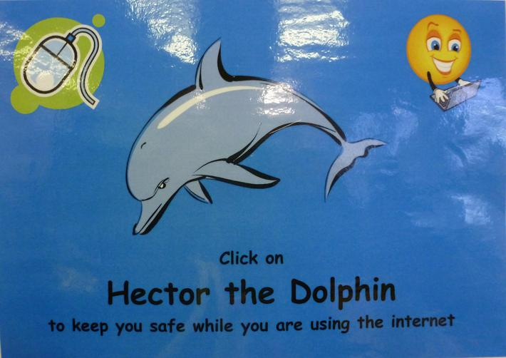 Hector the Dolphin