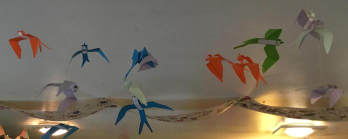 The end of summer but we've still got Swifts