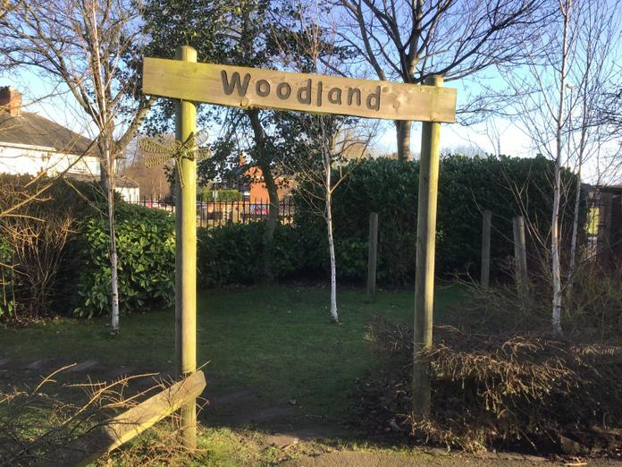 KS1 Woodland