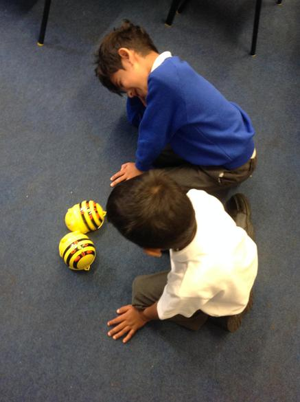 Fun with the beebots.