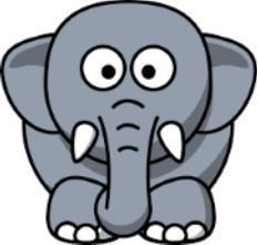 Epic Elephants