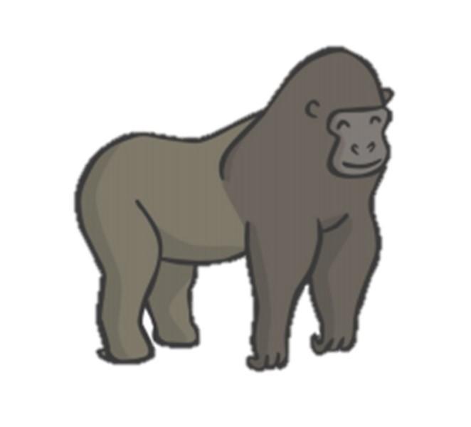 Groovy Gorillas