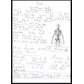 Stratos 2B - Non-chron report on the human body