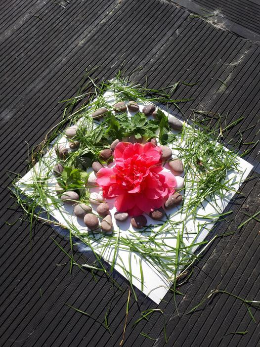 Emily 3W Andy Goldsworthy inspired art