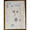 Esme- 2H- Non-chronological report on Pandas