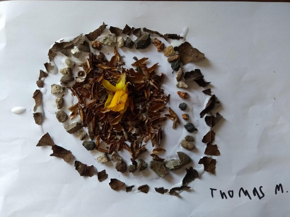 Thomas 3C Andy Goldsworthy inspired art
