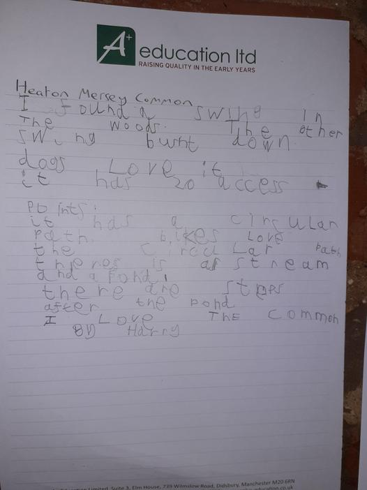 Fantastic writing from Harry