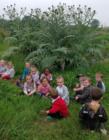 Nursery Trip to Roots