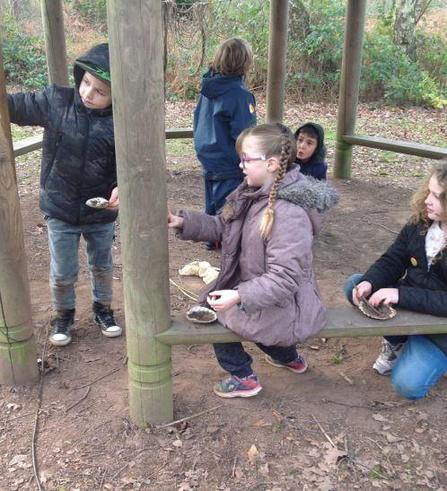 Year 3 Trip to Bishops Wood