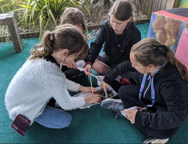 Year 5 Devon Residential Trip