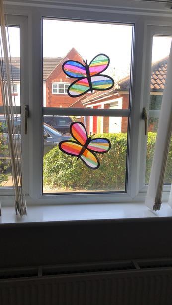Beaux papillons!