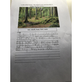 Woodland Poem - Archie