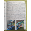 Diary Entry - Evie