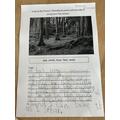 Woodland Poem - Josh