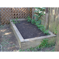 This raised bed contained only weeds,