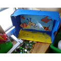 Finlay's shoebox Sea Life