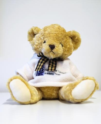 Ebenezer (Ebe), the DSAT Bear!