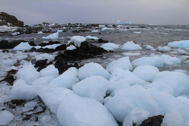 The first day of icebergs and beaches littered with ice pebbles and boulders.
