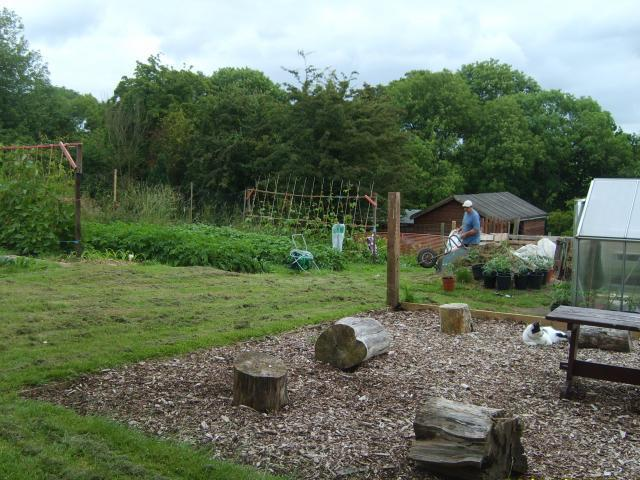 Vegetable garden and seating area