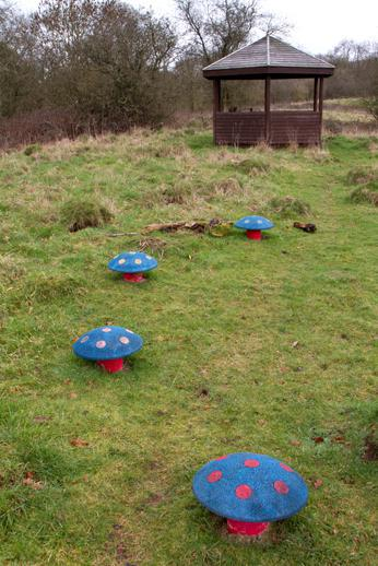 The fairy ring of toadstools and gazebo