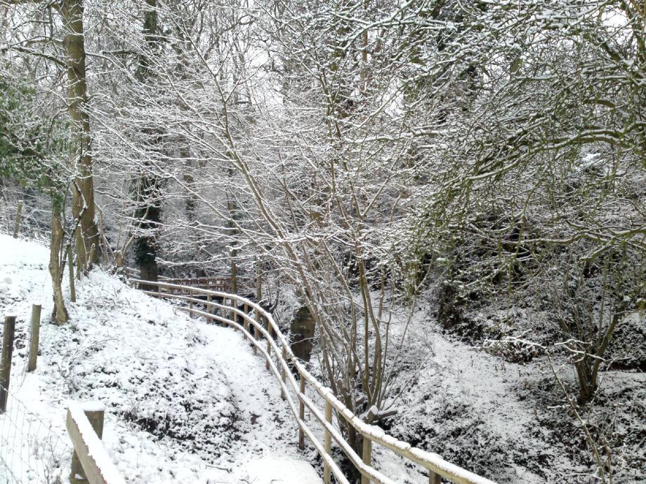 Snowy stream path