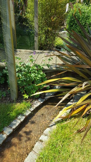 Water feature in sensory garden