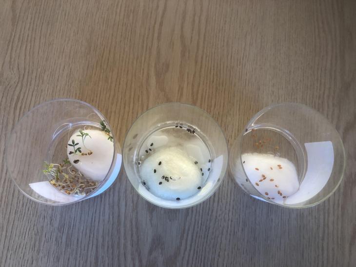 1) Neutral  2) Alkali  3)Acid
