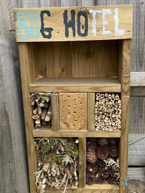 Murray's finished bug hotel