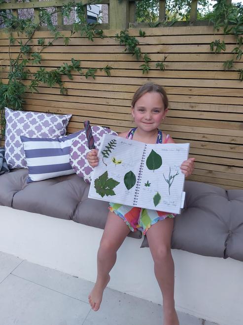 Seryn's Leaf Project