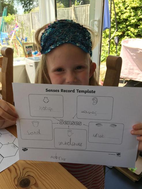 Aubrey's senses sheet